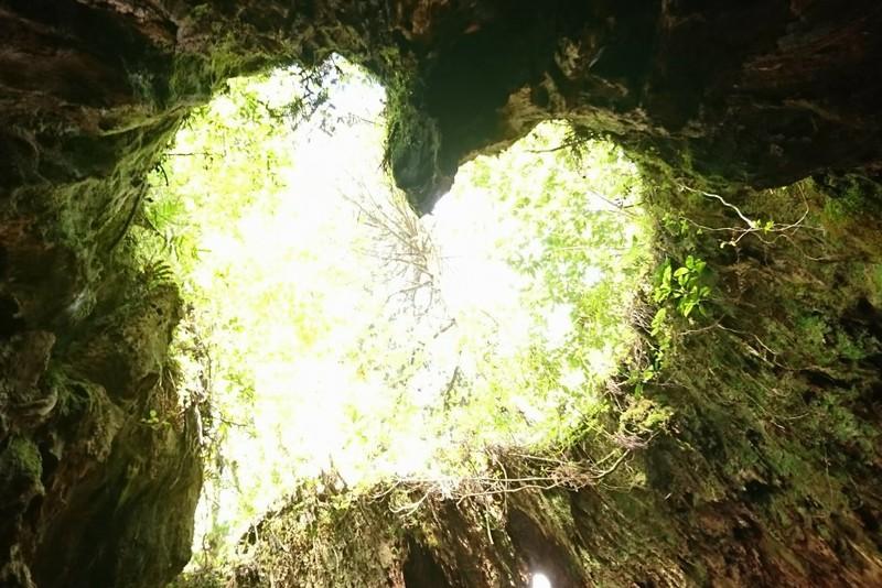 宮之浦岳1泊2日登山レポート【屋久島/縄文杉/新高塚/黒味岳】
